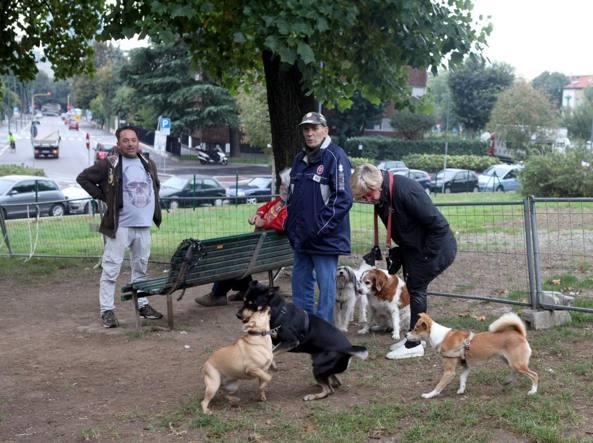 L area cani si rif il look for Piscina x cani milano