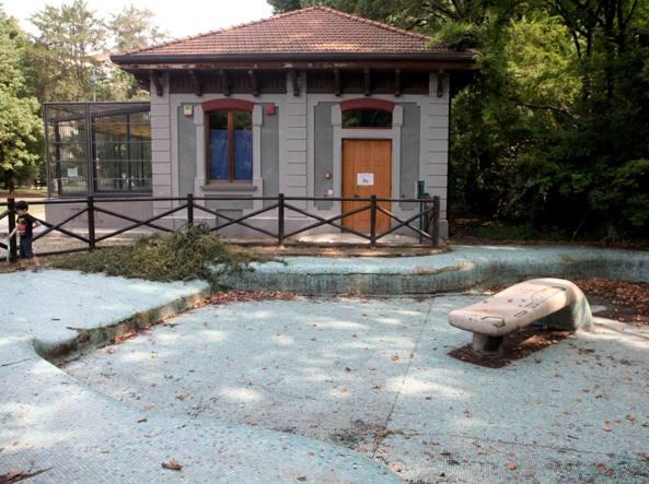 La vasca delle foche dell ex zoo diventi una piscina per for Piscina x cani milano