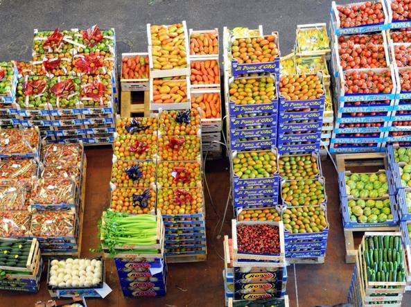 Scarico delle cassette di frutta all'ortomercato (foto Maule)