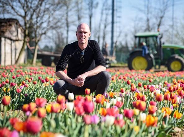 Картинки по запросу cornaredo tulipani