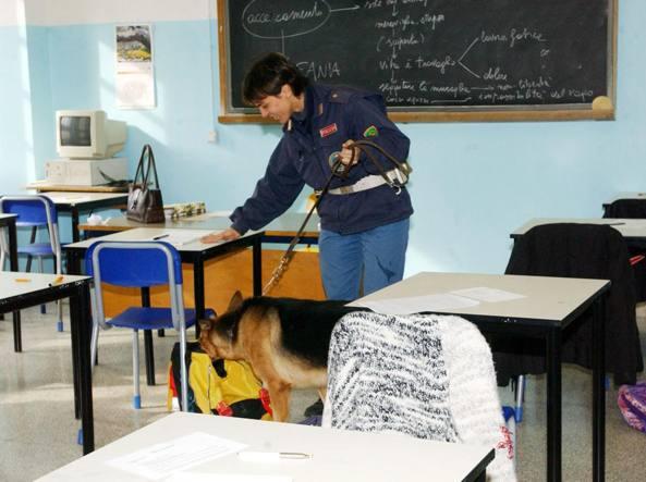 Un cane antidroga a scuola (foto Bolzoni)