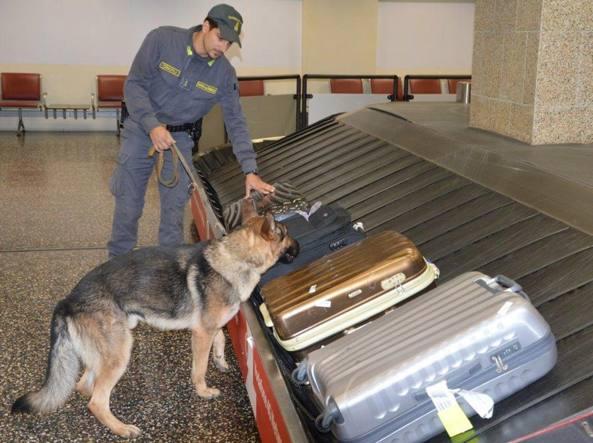 Droga: 11,5 kg cocaina sequestrati nel Cagliaritano, tre in cella