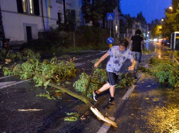 Tromba d'aria a Soci: alberi abbattuti, tetti scoperchiati, mobilitazione dei vigili