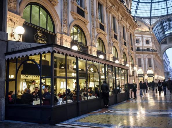 Galleria salotto e gatto rosso contro camparino for Rinnovo contratto affitto